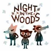 Night in the Woods  - PlayStation 4